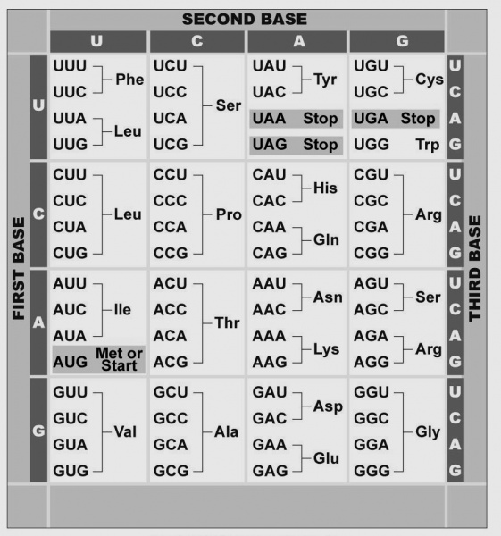 File:GeneticCodeTable.jpg